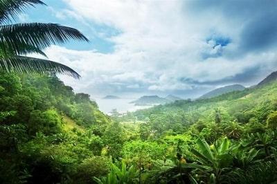 גן עדן על גלגלים - טיול ג'יפים בקוסטה ריקה