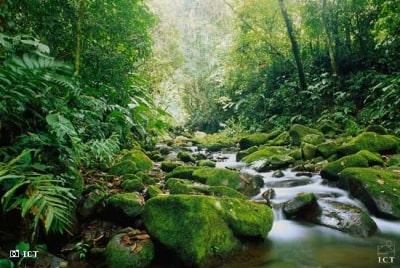 מסע ג'יפים לקוסטה ריקה