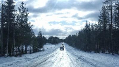 מסמרים בשלג ואורות בשמים
